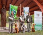 b_150_150_16777215_00_images_stories_kutya_vizslafovdij2016.JPG