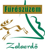 Zalaerdő - Fűrészüzem